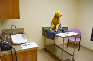 Humane Society of Harrisburg Area Clinic
